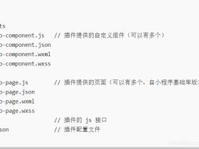 微信小程序自定义组件和插件开发总结